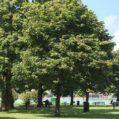 貝爾島公園用戶圖片