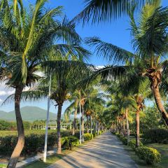 Yalong Bay Rose Valley User Photo