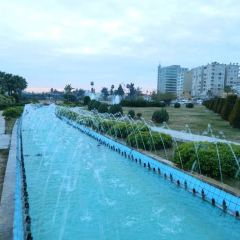 Ataturk Parkı User Photo