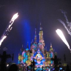 Ignite the Dream - A Nighttime Spectacular of Magic and Light User Photo