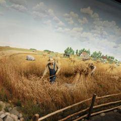 馬尼托巴博物館用戶圖片