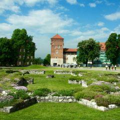 瓦維爾城堡-皇室私人住所用戶圖片