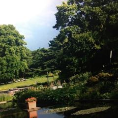 老漢堡植物園用戶圖片