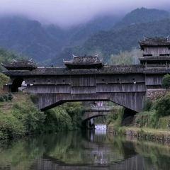 如龍橋用戶圖片