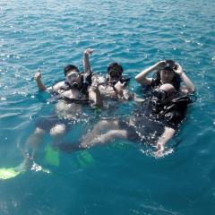 馬克·斯科特潛水俱樂部張用戶圖片