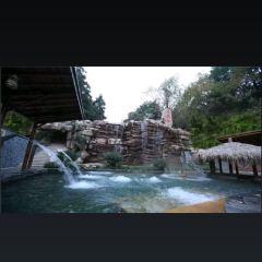 飛天溫泉用戶圖片