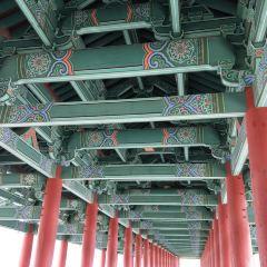 한국광고영상박물관 여행 사진