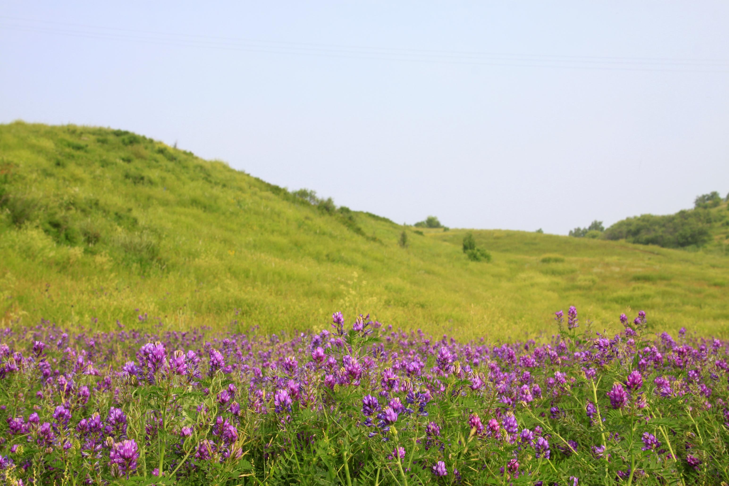 吐力根天堂草原漂流