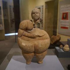 国立考古学発物館のユーザー投稿写真