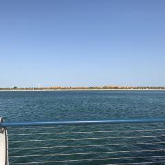 阿布扎比海濱大道和防波堤用戶圖片