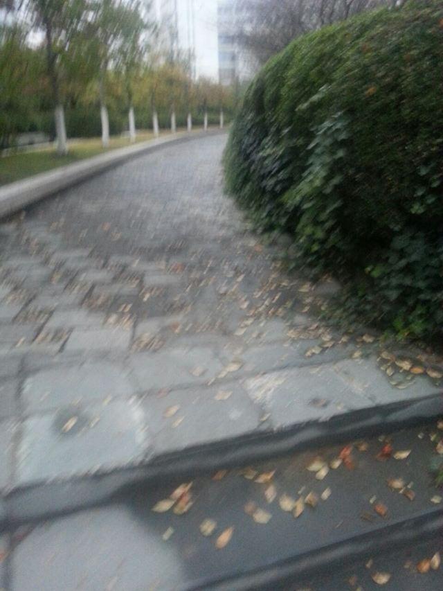 그랜트 공원