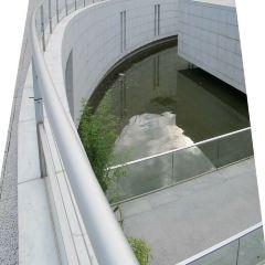 亞洲藝術博物館用戶圖片