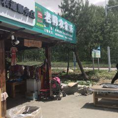 西北邊境老韓農家樂用戶圖片