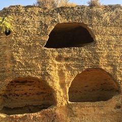 神殿之穀用戶圖片