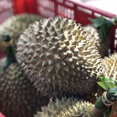 Jimmy's Durian Orchard User Photo