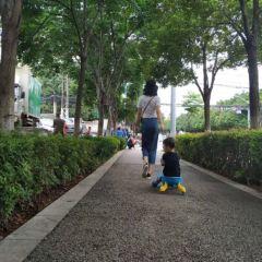 Forest Botanical Garden User Photo