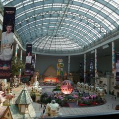 로먼 유 파크 여행 사진