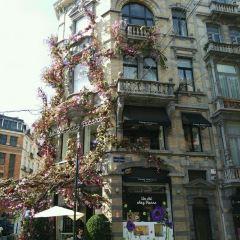 Place du Grand Sablon User Photo