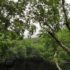 Beishan National Forest Park User Photo