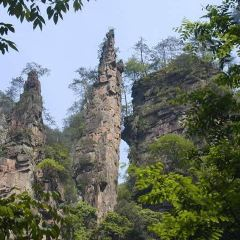 Cuifeng Mountain Forest Park User Photo