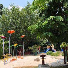 Hort Park User Photo