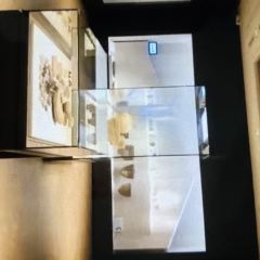 국립청주박물관 여행 사진