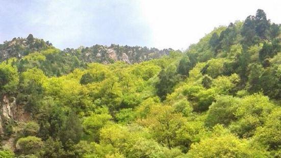 九龍山生態旅遊風景區