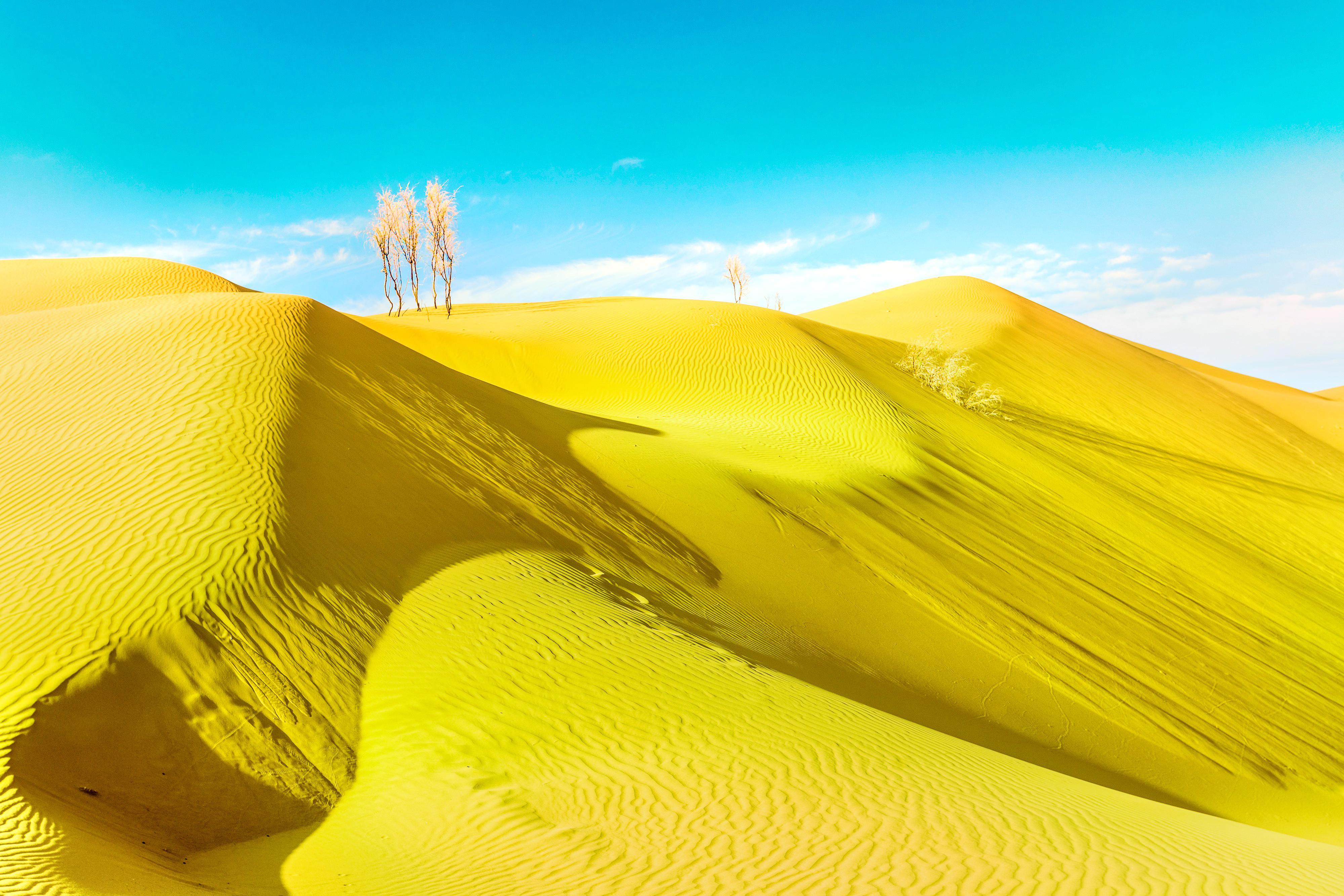 Tengger Golden Sand Sea