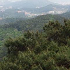 사오관 국가 산림 공원 여행 사진