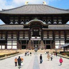 東大寺用戶圖片