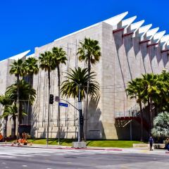 Los Angeles County Museum of Art User Photo