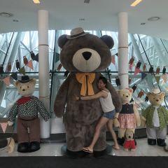 Teddy Bear Safari User Photo