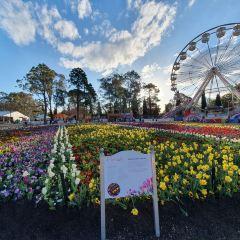 Floriade User Photo