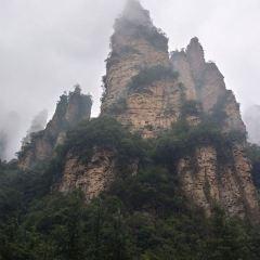 장가계 국가삼림공원(장자제 국가삼림공원) 여행 사진