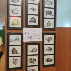 貓博物館張用戶圖片