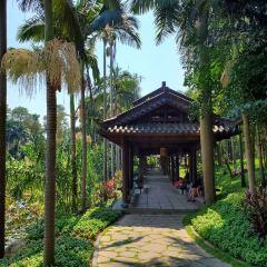 Qingxiu Mountain User Photo