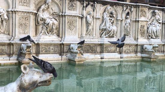 锡耶纳。在古城的芳香广场上,也叫田园广场,这个喷泉被栏杆围起