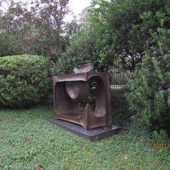 Carousel Gardens User Photo