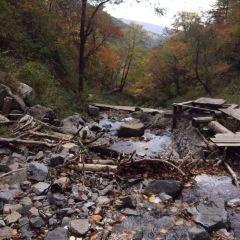Laobai Mountain Original Ecological Scenic Area User Photo