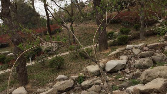Culture Park (qingdaoshihaipohegongyuan)