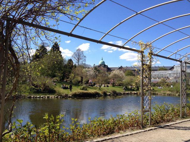 Botanical Gardens (Botanisk Have)