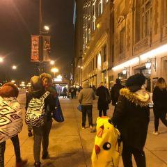 City of Chicago - City Hall User Photo