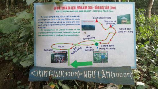 吉婆岛上很大的一个原始森林,植被茂密,天然氧巴。有很多珍贵树