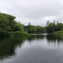 奧納西斯水庫(中央公園水庫)用戶圖片