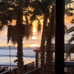 Santos beach用戶圖片