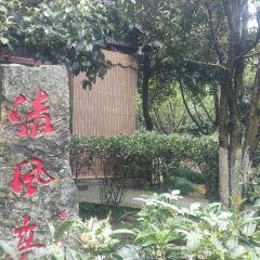 蘇景園用戶圖片