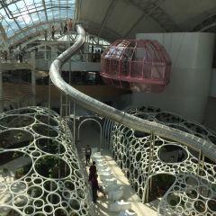 Xin Amusement Park User Photo