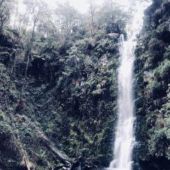 Erskine Falls User Photo