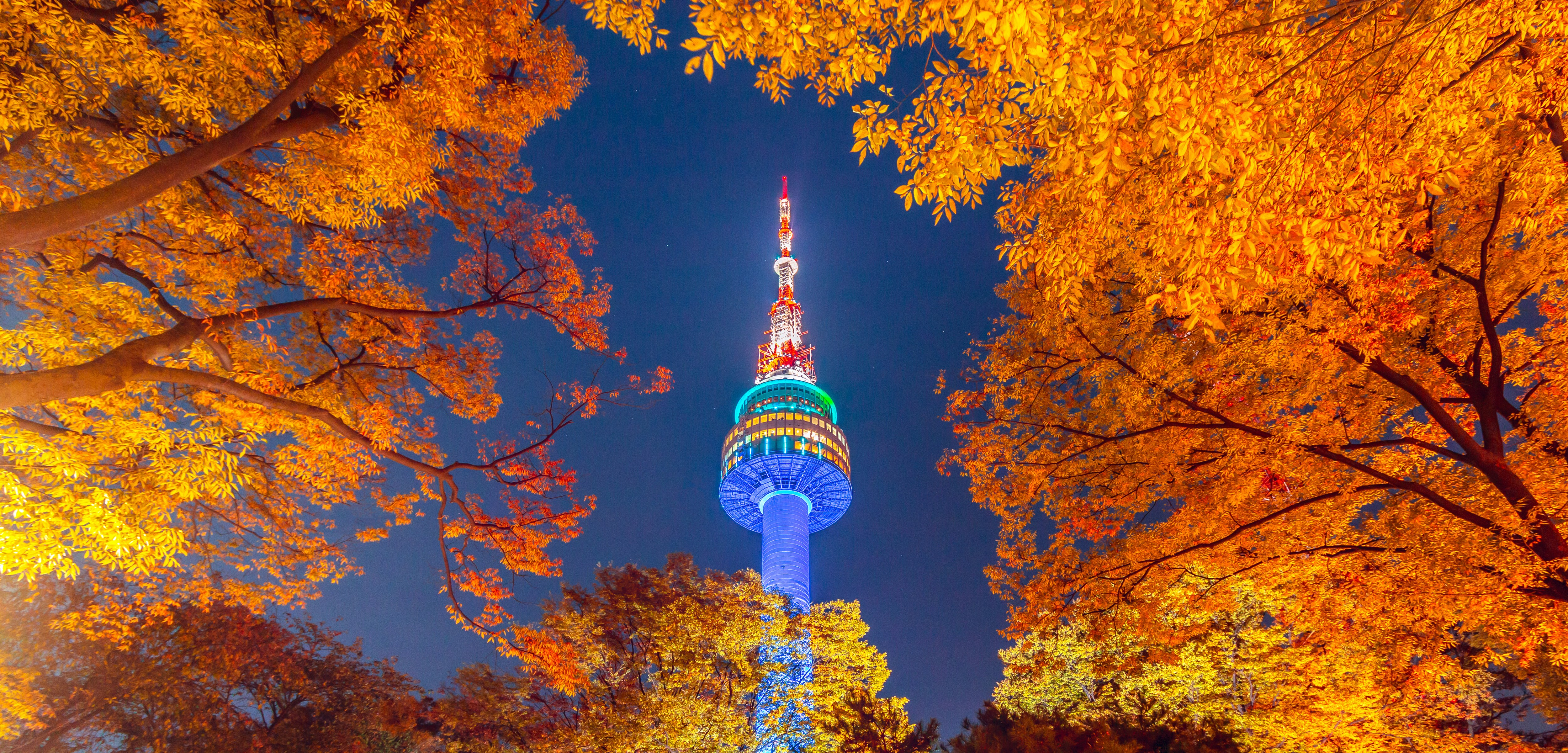 N Seoul Tower Ticket