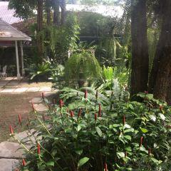 Nakara Jardin User Photo
